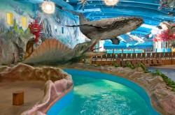"""аквапарк в Киеве """"Dream Island"""""""