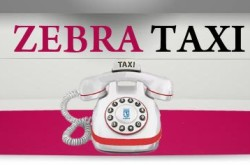 Зебра такси в Киеве