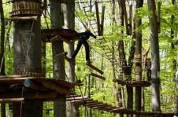 Веревочные парки — набирающее обороты развлечение….