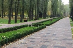 Где в Киеве можно побегать