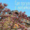 Куда пойти с любимой в Киеве